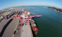 대산항 컨테이너물동량 사상 최대…11만TEU 초과 달성