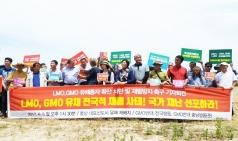 유전자변형생물체, 친환경 유기농업특구 홍성 덮쳤다