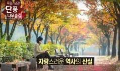 [동영상] 독립기념관 단풍나무숲길 사진공모전 개최