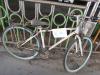 무단 방치된 자전거로 골머리 앓는 아산역