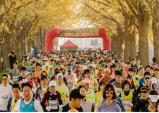 제4회 은행나무길 마라톤대회 개최‥오는 11월 11일