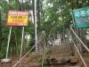 천안 일봉산공원 토지주, 공원 입구 철조망으로 봉쇄..'점입가경'