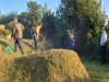 광덕면 이장협의회, 무연분묘 430기 벌초