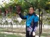 '천안거봉포도' 발전 기여한 이관희씨, 올해의 천안시 최고농업인에 올라